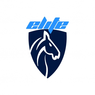 elitecarshipping-logo-name